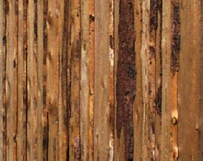 Vertical rustic board siding built by greenleaf forestry